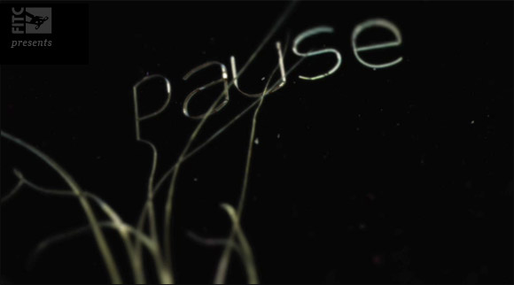 pause Give Away: PAUSE   ideas in motion