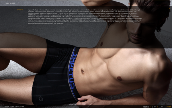 335 Impetus Underwear // The Production and Commercialization of Underwear @ 100 Best Flash Websites