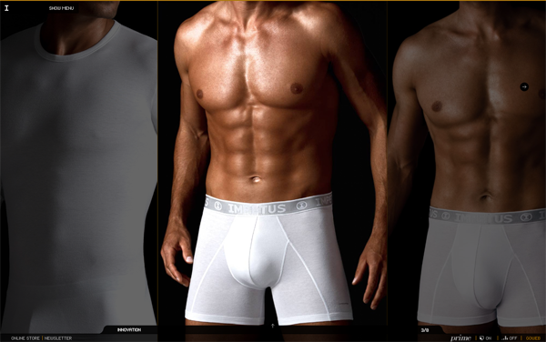 445 Impetus Underwear // The Production and Commercialization of Underwear @ 100 Best Flash Websites