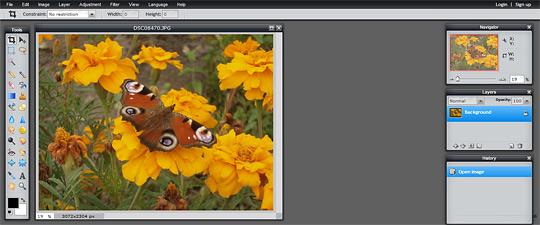 p01 5 Free Online Alternatives to Photoshop
