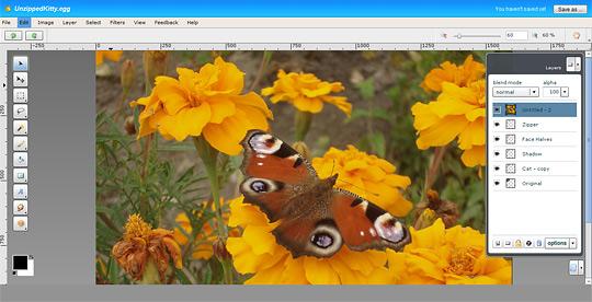 p02 5 Free Online Alternatives to Photoshop