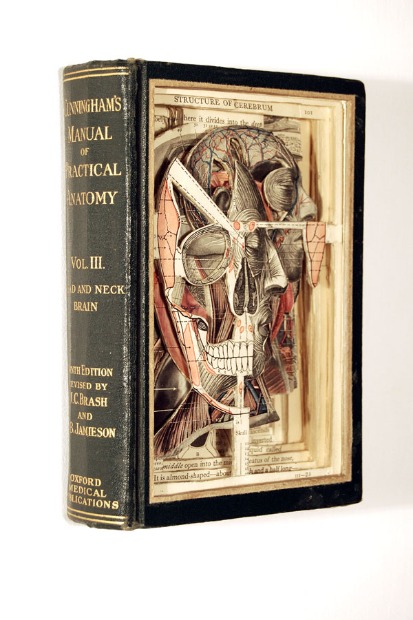 Interview with the Book Surgeon