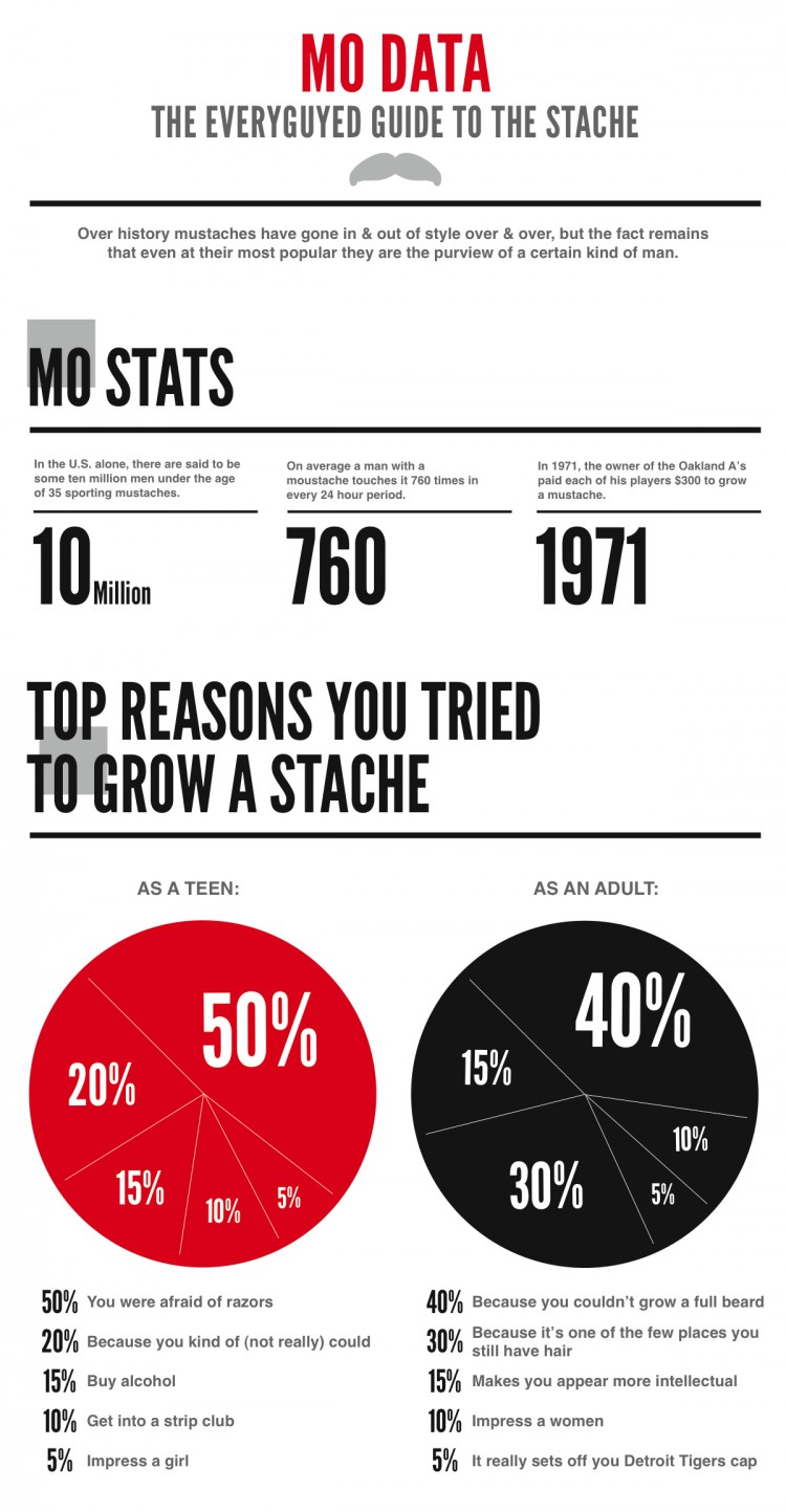 MoData half 750x1443 Mo Data: The EveryGuyed Guide to the Stache