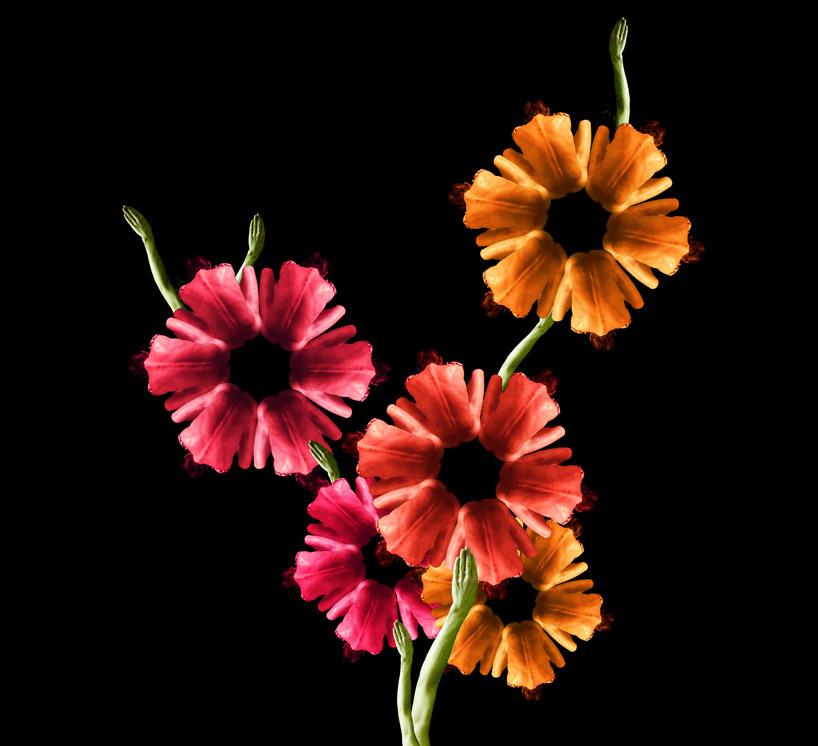 cw4b Human flowers by Cecelia Webber