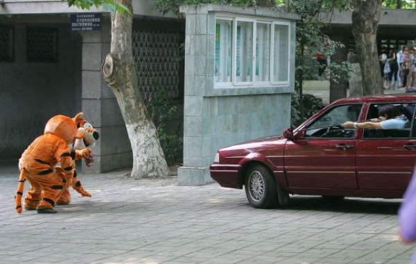 http://designyoutrust.com/wp-content/uploads/2011/08/chengdu-zooescaped-tiger-03.jpg