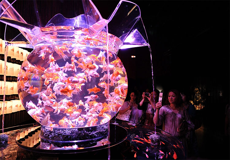 328 Exhibition in Tokyo Turns Aquarium into Works of Art