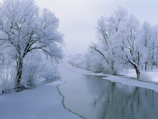 10 free great winter wallpapers 041 20 Free and Frosty Winter Wallpapers