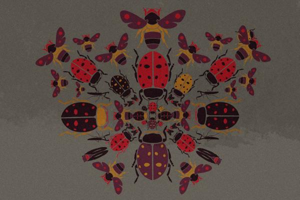 cristian grossi illustrazione insetti pinko fashion v2 PINKO insect tshirt collection
