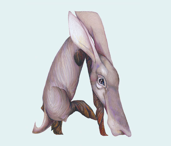 Creative vector Inspiration Animals in Alphabetical Letters 1 Creative vector Inspiration: Animals in Alphabetical Letters