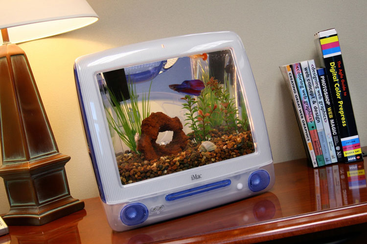 DYT imac quarium 2 Do you like fish, buys the Imacquarium!