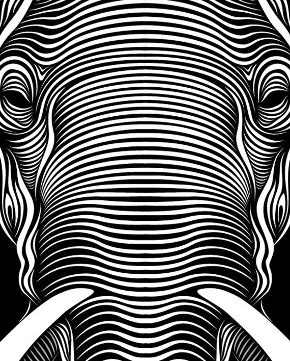 Patrick Seymour faces 1 Hypnotic Line Art Faces