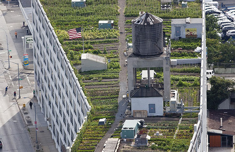 252 New York Secret Rooftop World