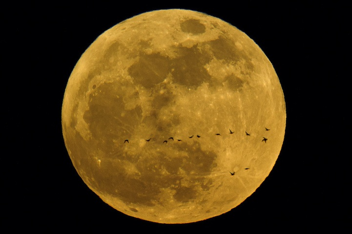 supermoon Most Gorgeous Supermoon Photos in 2012