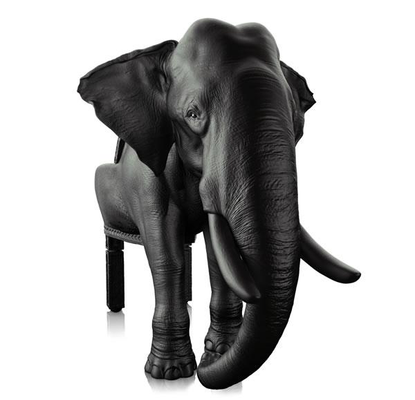 Elephant Chair :: Máximo Riera