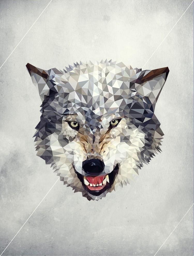 Lobo polygon 750x988 Lobo