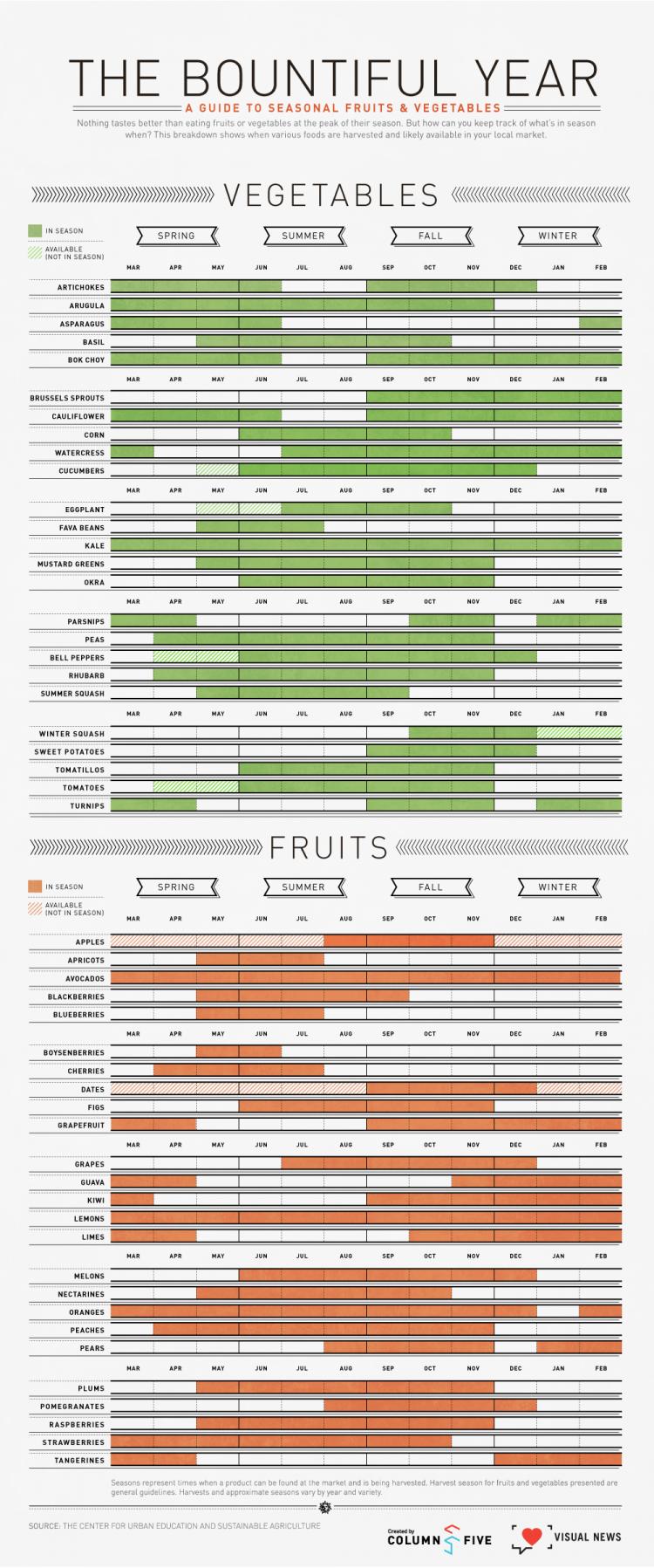 Visual News seasonal fruits and veggies 750x1797 The Bountiful Year: A Visual Guide to Seasonal Produce