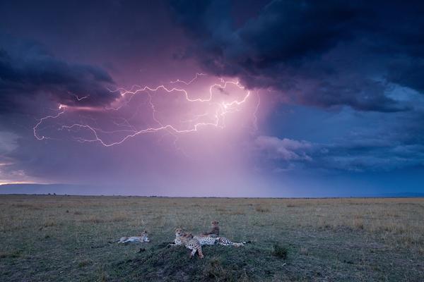 i1a3 Amazing Photographs of Lightning
