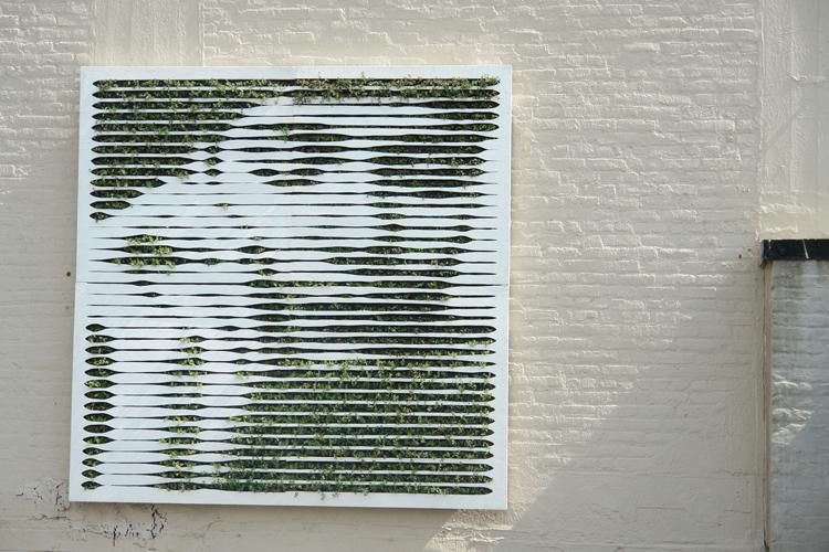 mosstika green wall1 Mosstika Urban Greenery