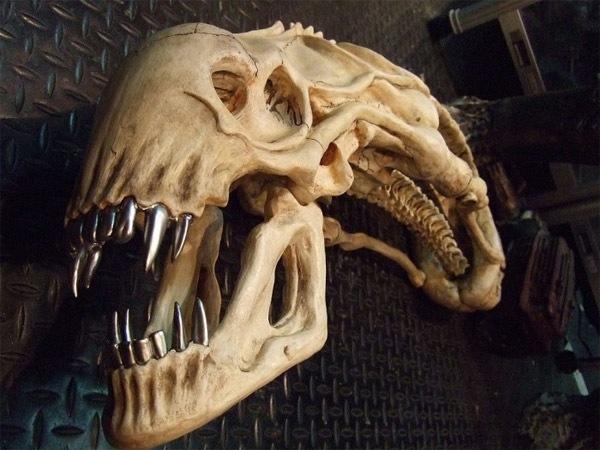 Alien Skull Trophy
