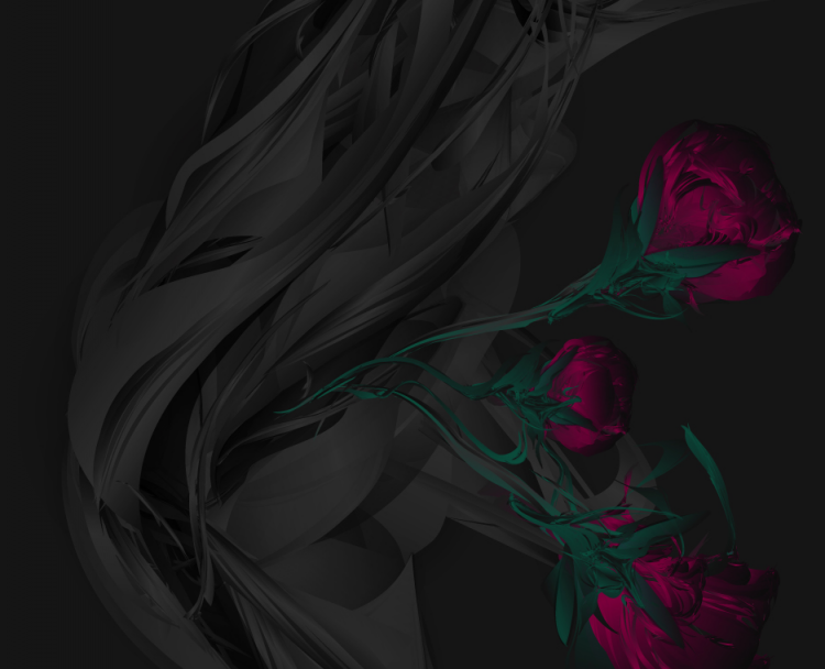 Screen shot 2012 08 28 at 3.43.09 PM 750x608 Wild Roses