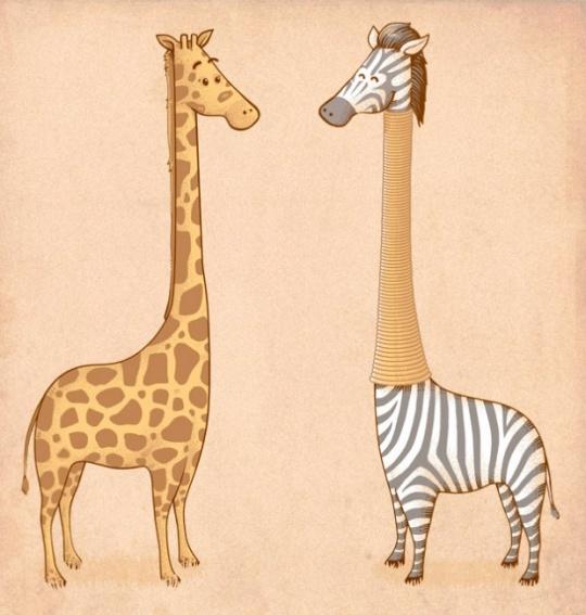 il 14 Funny Illustrations