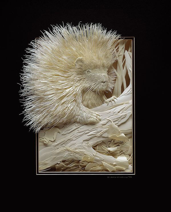 Mind Blowing Paper Sculptures