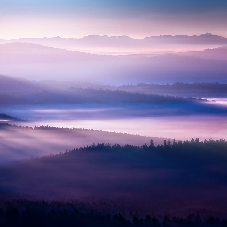 Breathtaking Photography of Early Morning Fog Across Majestic Landscapes 05GenCept 750x750 Early Morning Fog Across Majestic Landscapes