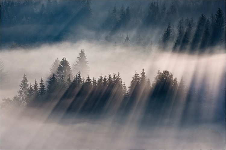 Breathtaking Photography of Early Morning Fog Across Majestic Landscapes 15 @ GenCept 750x500 Breathtaking Photography of Early Morning Fog Across Majestic Landscapes