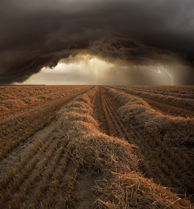 Harvest Storm  Harvest Time Photo Series By Franz Schumacher