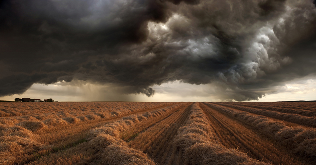 Harvest Storm 3 Harvest Time Photo Series By Franz Schumacher