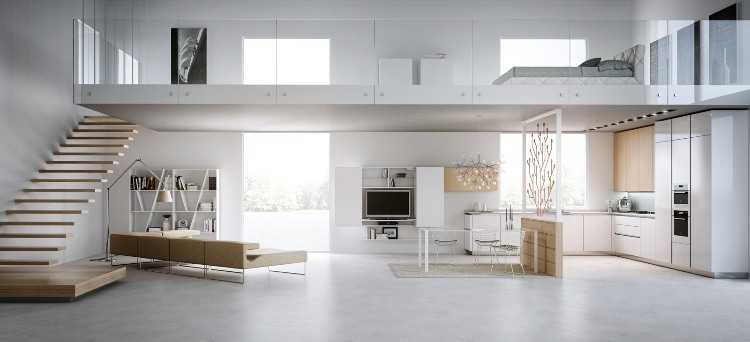 in 1 Modern Light Loft Interiors