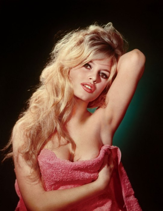 01 Striking poses in the early 1960s Photos of Brigitte Bardot in Her Sex Kitten