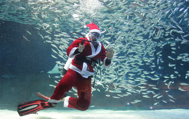 182 Santa Claus Diver Performs In Seoul
