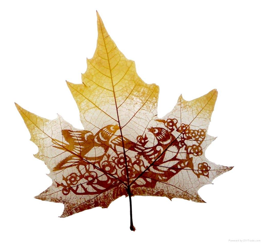 Amazing Leaf Carving Art Photography 13 Amazing Leaf Carving Art