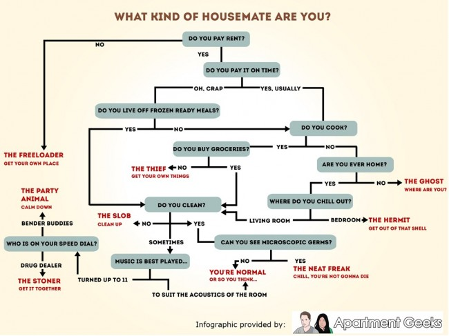 housemateflow infographic 650x487 What Kind of Housemate Are You? [Infographic]