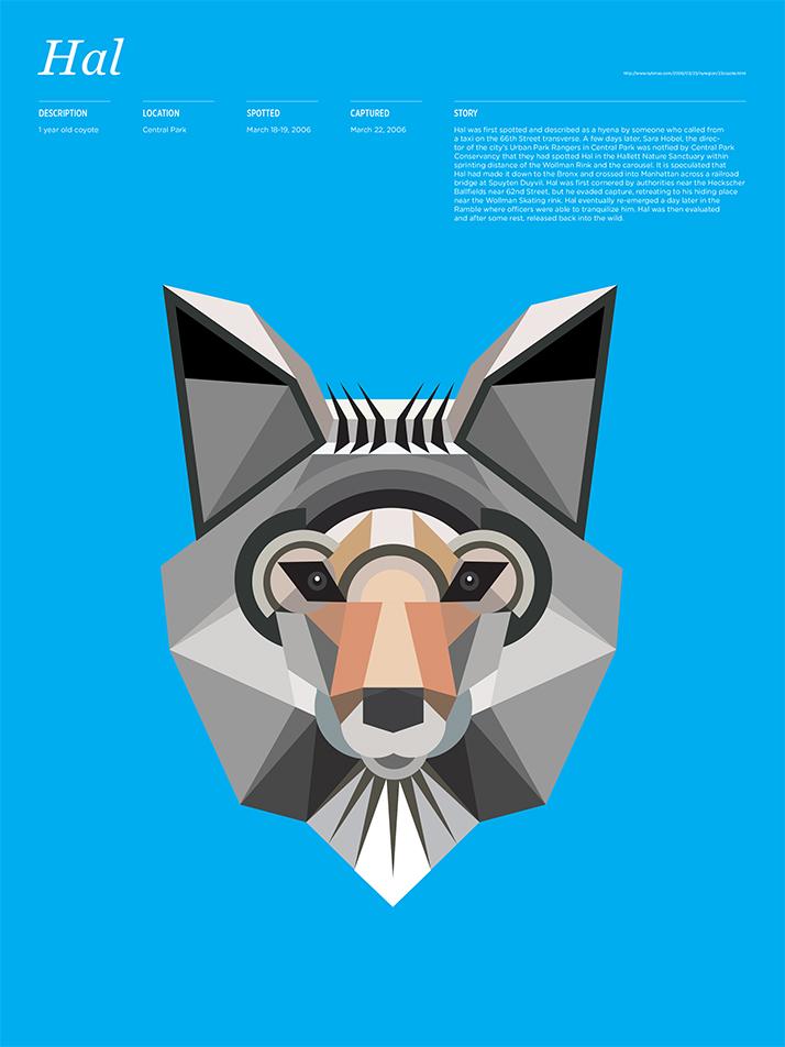 014 Animal Infographic