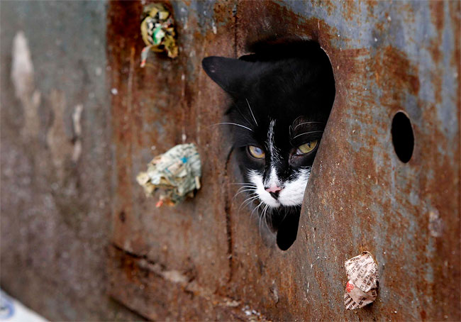 130 Photo of the Day: Cat Hole