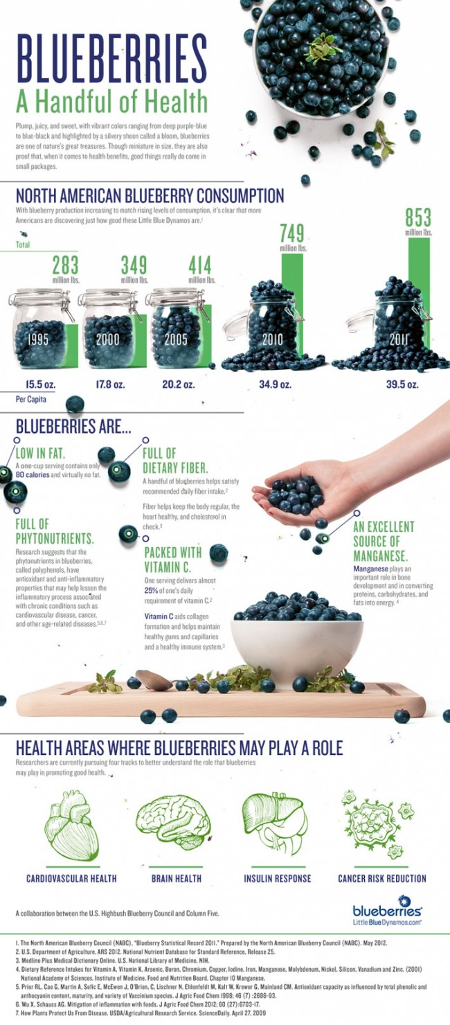 blueberry council infographic a handful of health 650x1480 Blueberries: A Handful of Health