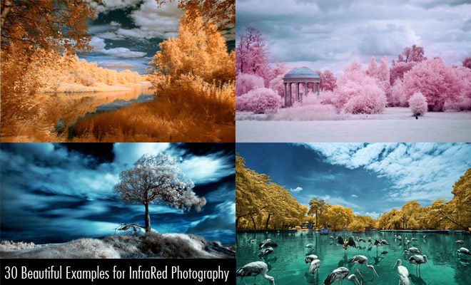 e200 30 Most Beautiful InfraRed Photography Examples for your inspiration