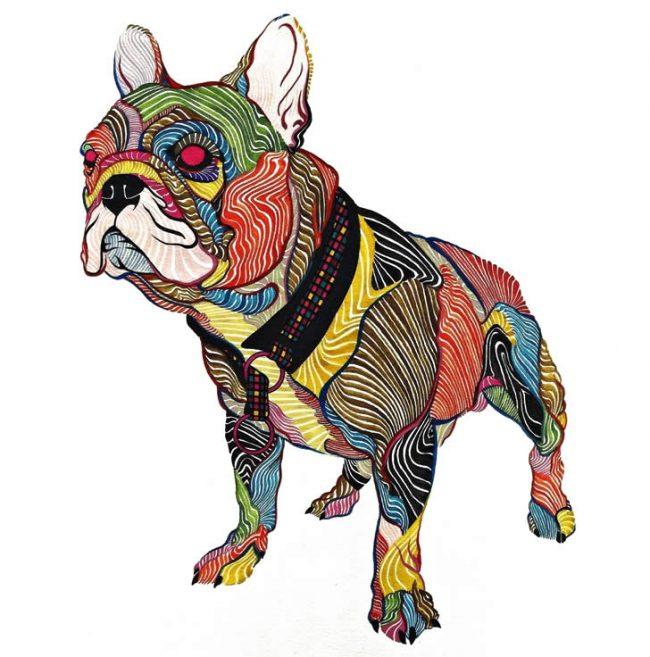 kael kasabian 04 650x657 Colorful Pets
