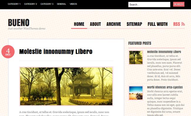 Bueno 15 Fresh and Free WordPress Themes