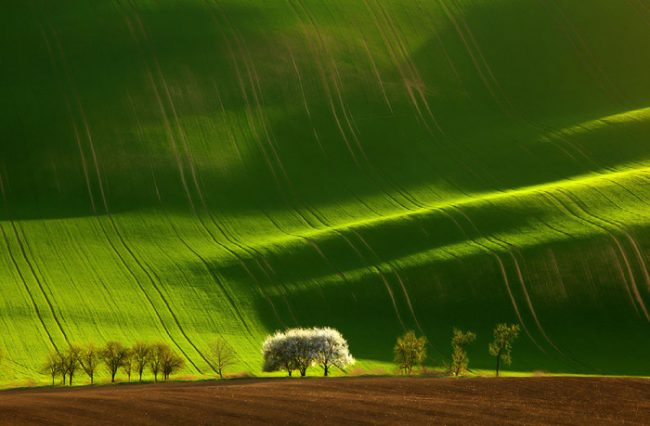 Colorful Landscapes 25 650x426 Eye Catching Landscapes For Inspiration