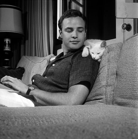 Marlon Brando with His Cat at Home circa 1950s 2 Marlon Brando with His Cat at Home, circa 1950s