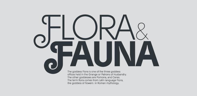 hft342 solomon font prod1 97% OFF SOLOMON FONT FAMILY