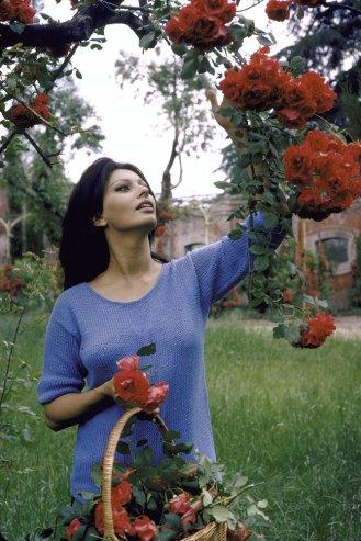 Sophia Loren in Italy 1964 4 Sophia Loren at Home in Italy, 1964