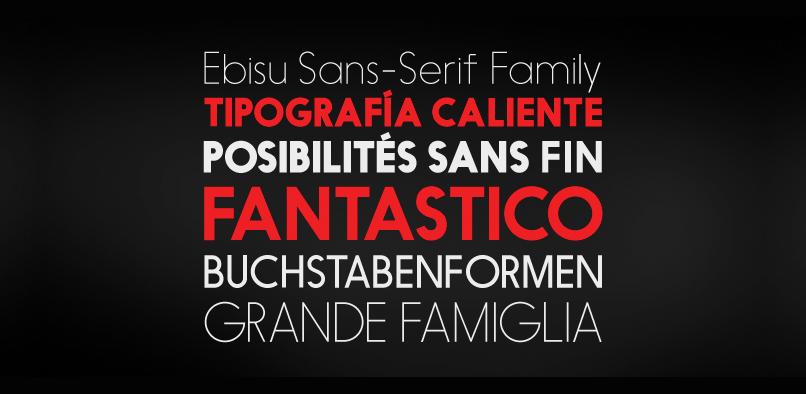 ebisu 3 95% OFF EBISU FONT FAMILY