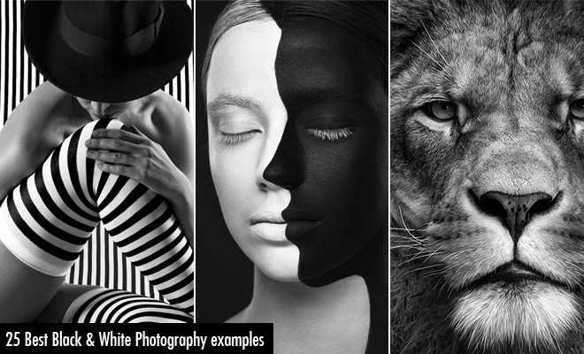 25 best black and white photography examples and tips for beginners