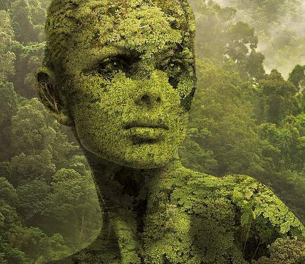 003 nature igor morski Nature by Igor Morski