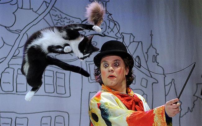 1182 Hop! Meow.