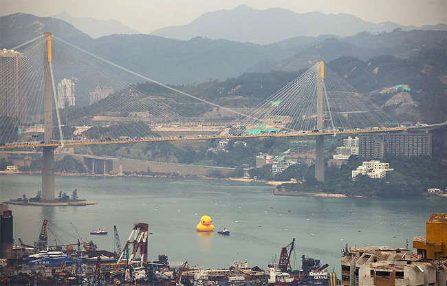13 World's Largest Rubber Duck Comes to Hong Kong
